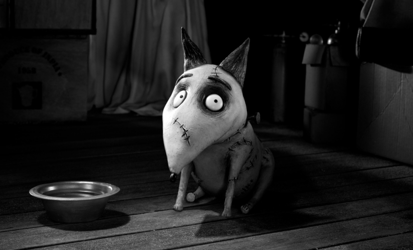 Nicht zu vergessen... Tim Burtons Frankenweenie (2012), © Walt Disney